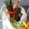 sac en coton bio et les légumes frais
